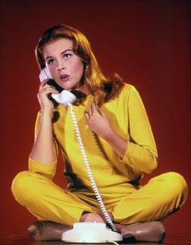 bye-bye-birdie-phone
